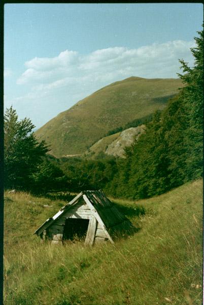 Černá hora, 2013